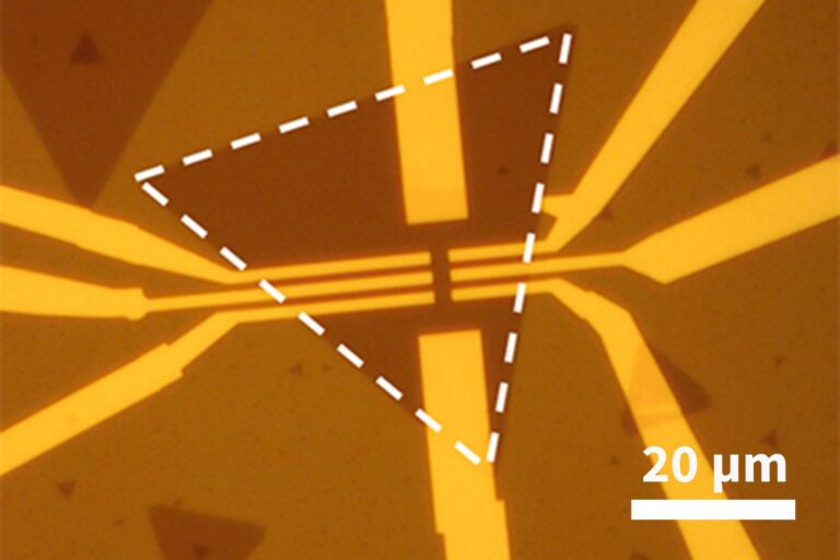 A Hall-bar device patterned into a single-layer MoS2 flake using the NanoFrazor. The electrical contacts written using the heated tip exhibit vanishingly small Schottky barriers due to no resist residues and no damage to the flake. As a result, the devices with contacts and top gates patterened with the NanoFrazor, show record-high on-off ratios. (Courtesy of Prof. Elisa Riedo, NYU)