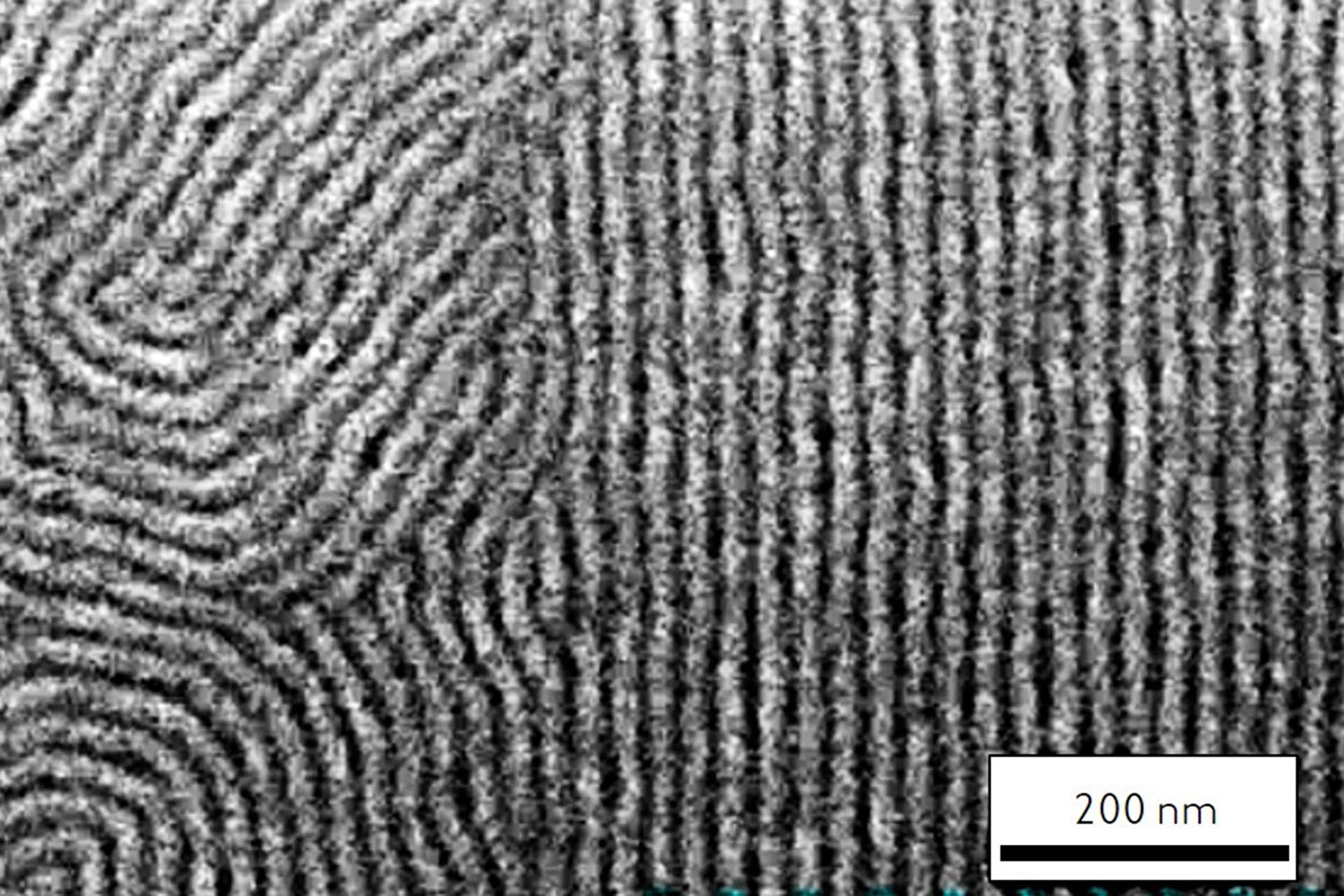 Directed self-assembly of PS-b-PMMA lamellae