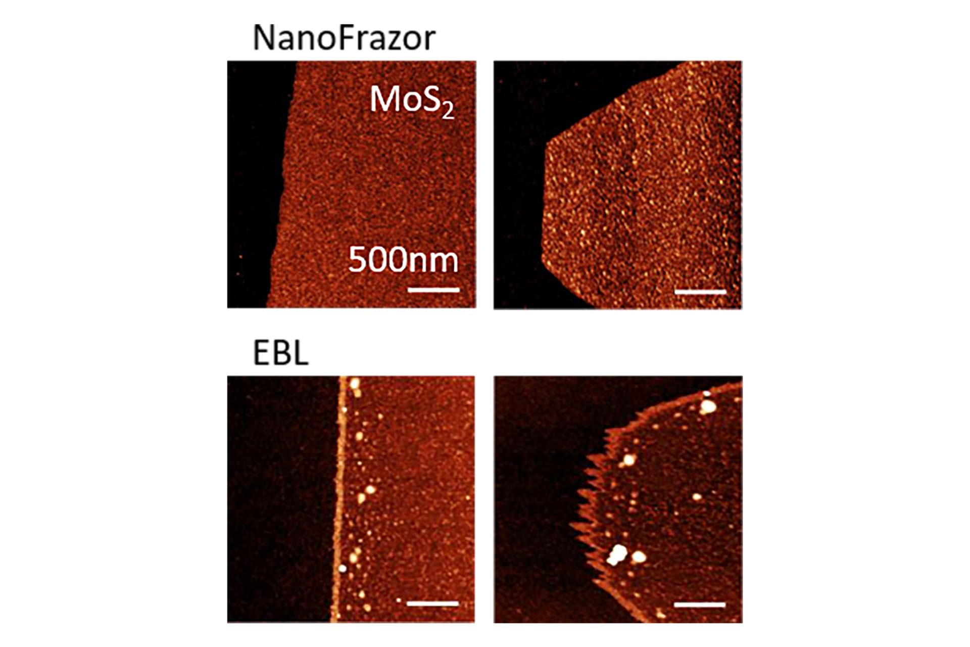 A side-by-side comparison of NanoFrazor- and electron beam lithography (EBL)-patterned contact electrodes on single-layer MoS2 flakes. (Courtesy of Prof. Elisa Riedo, NYU, publication Zheng et al. Nat. Electr. 2019)